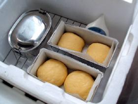 ほわほわ かぼちゃパン(ミニ食、あんぱん、他)_c0110869_22224880.jpg