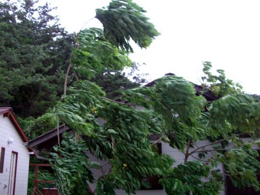 台風4号情報7月13日_e0104695_21373259.jpg