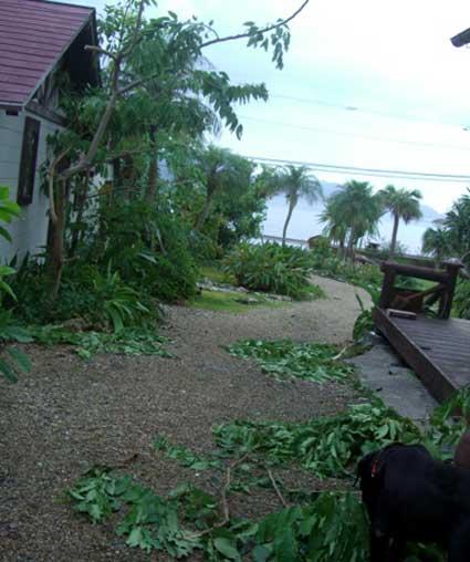 台風4号情報7月14日_e0104695_2146934.jpg