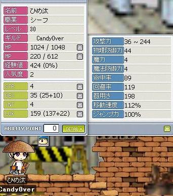 b0068519_20421731.jpg