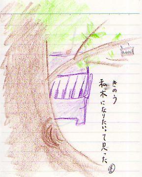 b0026428_185268.jpg