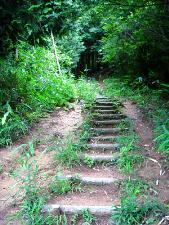山門の左手に近道と書かれた看板があって、そちらは急な斜面を登っていく道。足場は階段状に歩きやすくされていますが、かなりの急勾配です。下から上を見上げると木々の中に道は消えています。