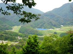 途中木々が消えて、周りの山が見渡せるようになってきます。緑が濃淡が美しい光景です。