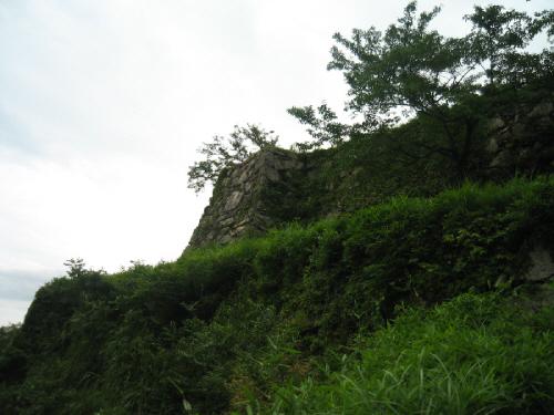 一番下側の石垣は草や蔦に覆われて、その形だけしか解らない状態、更にその上に積み上げられた石垣が、昔の面影を忍ばせます。