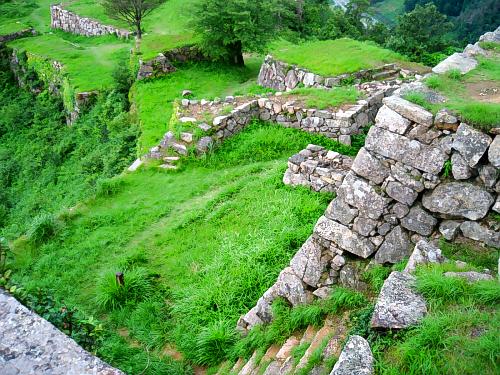 緑の草に覆われた城跡。緑から顔を覗かせる石垣の美しさ。金と時間を費やしてもここに城を築きたかった城主の気持ちが、ふとわかる気になってきます。