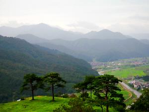 城の敷地の一部には大きな木が数本、それを越して眺める町並みと、山々。美しく雄大な光景です。