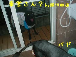 b0003270_181274.jpg