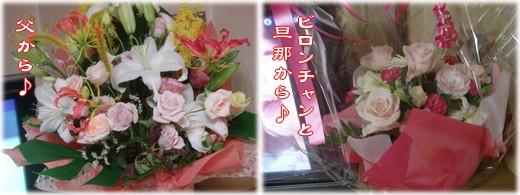 b0078073_2282019.jpg