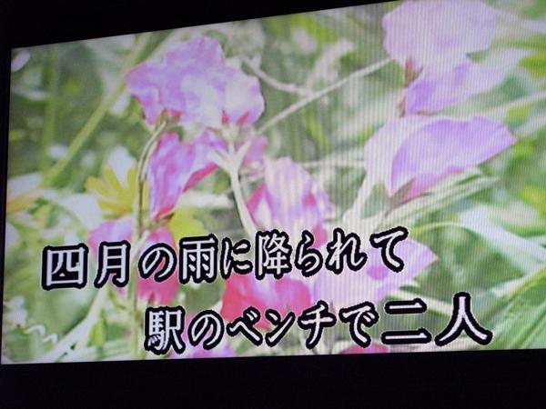 b0017978_1449526.jpg