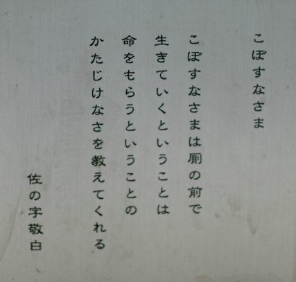 f0138600_0302070.jpg