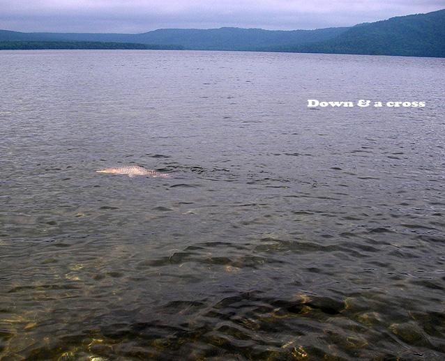 阿寒湖外伝2_c0095801_11432991.jpg