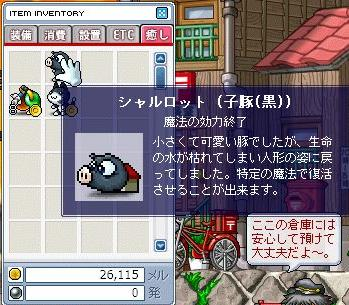 c0013211_1144792.jpg