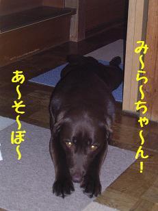 b0113725_10443022.jpg