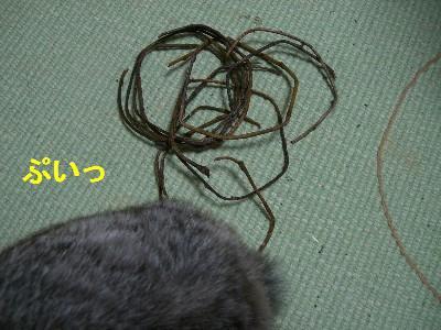f0104057_1953362.jpg