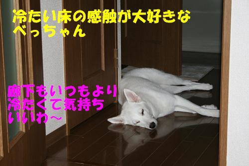f0121712_16502524.jpg