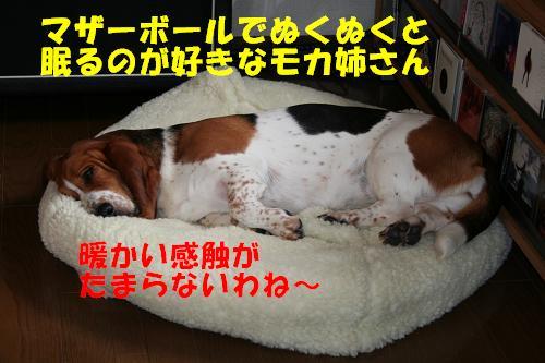 f0121712_1650873.jpg