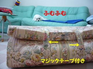 f0145192_1620271.jpg
