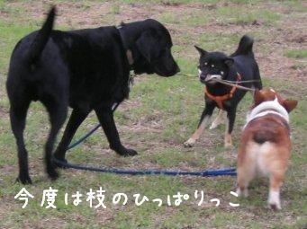f0068501_951484.jpg