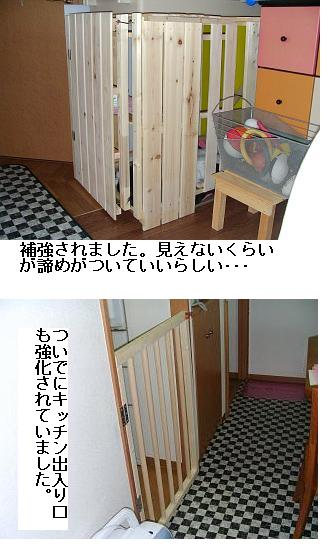 f0136322_03747.jpg