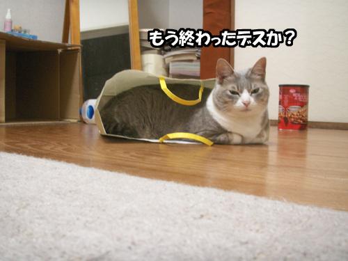 くきのうみ花火の祭典_b0083267_22334834.jpg