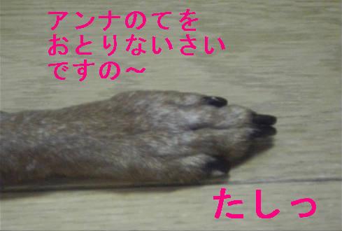 f0123589_15133783.jpg