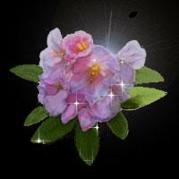 f0146760_1813833.jpg