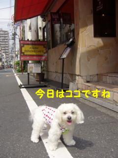 f0145192_14573233.jpg