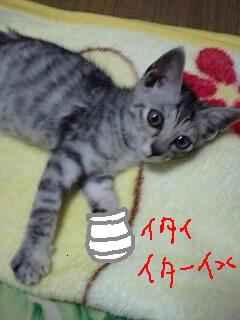 b0119416_1252411.jpg