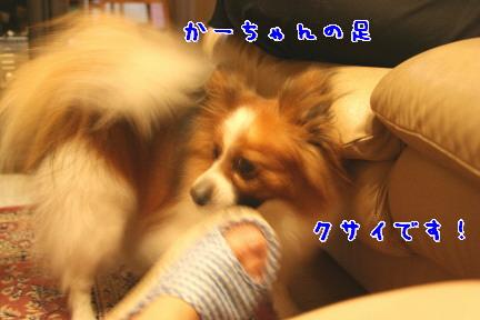 d0013149_224395.jpg
