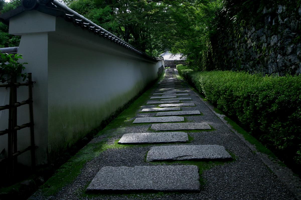京都 吉峯寺 <紫陽花> 1_f0021869_14541414.jpg