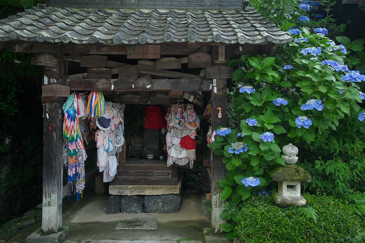 京都 吉峯寺 <紫陽花> 1_f0021869_14573012.jpg