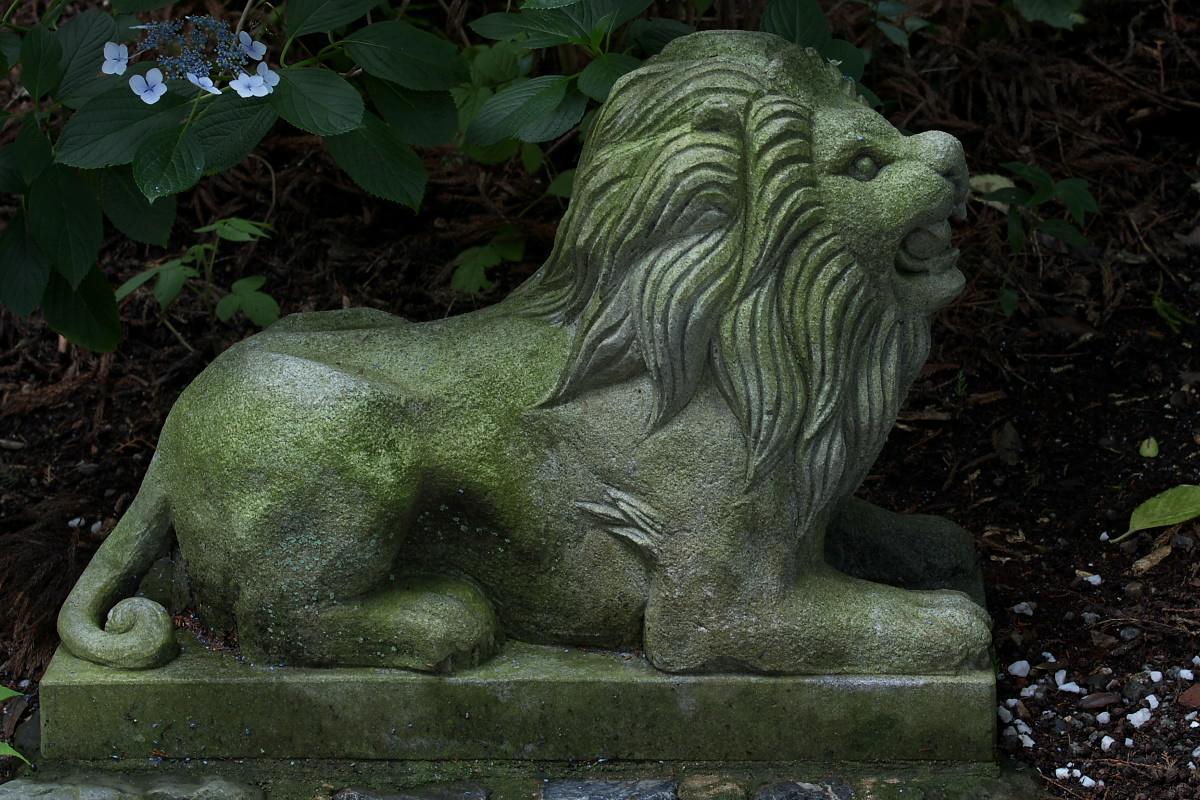 京都 吉峯寺 <紫陽花> 1_f0021869_14581464.jpg