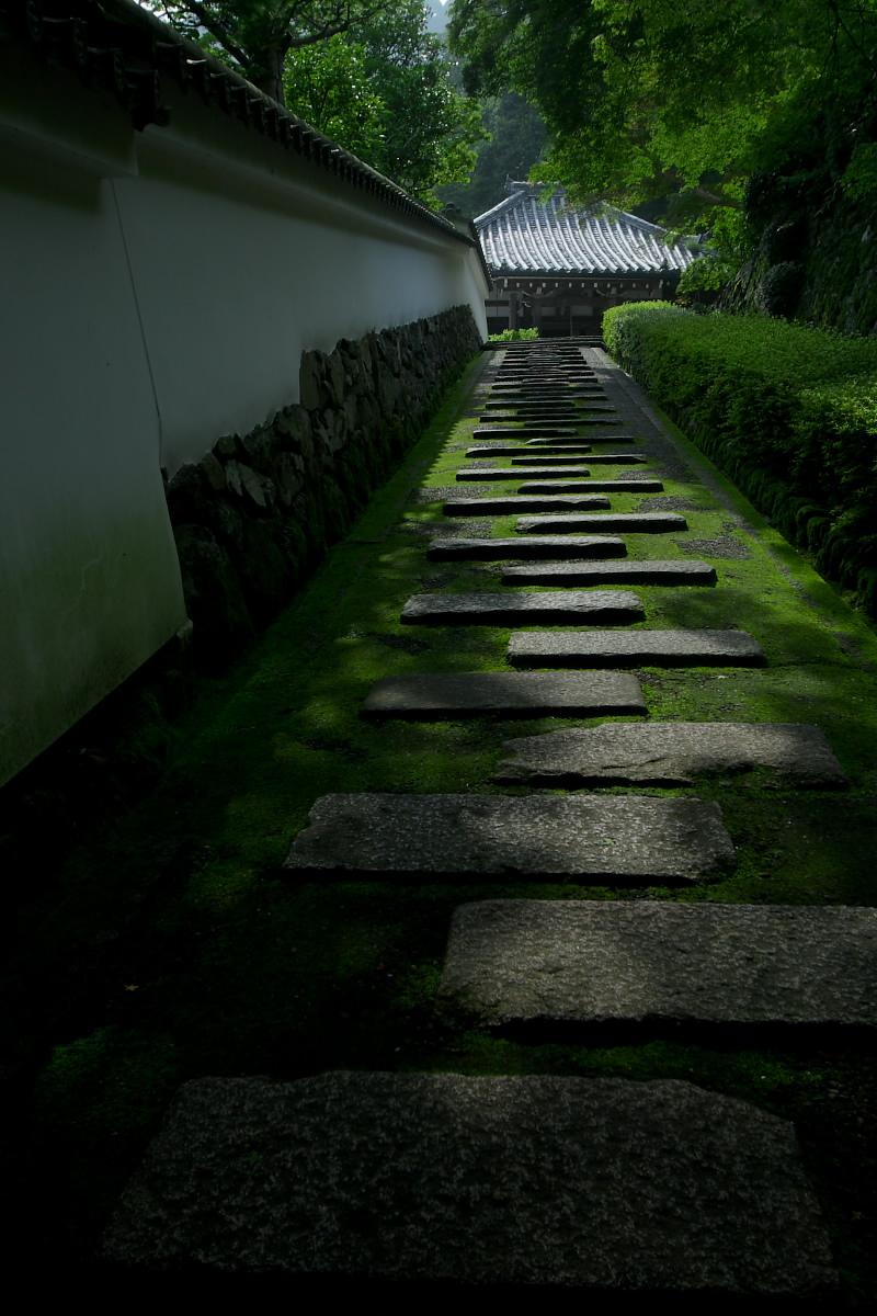 京都 吉峯寺 <紫陽花> 1_f0021869_1505424.jpg