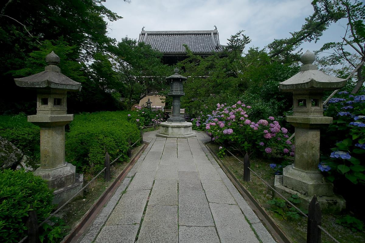 京都 吉峯寺 <紫陽花> 1_f0021869_1521556.jpg