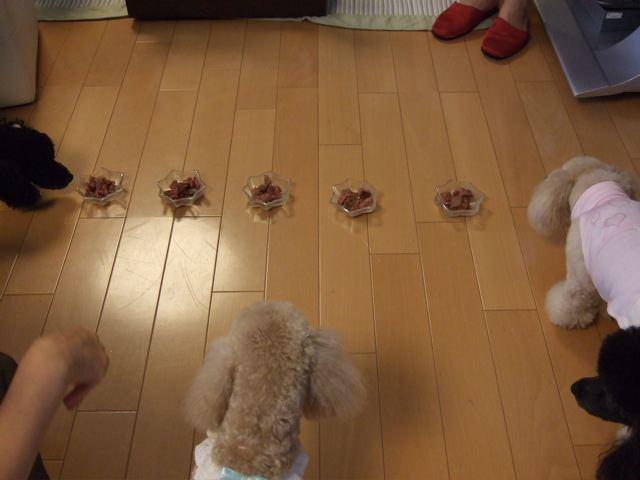 2007.7.23  昨日のお誕生会_a0083571_23142444.jpg