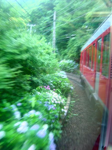 7/21 箱根にて_f0072976_041066.jpg
