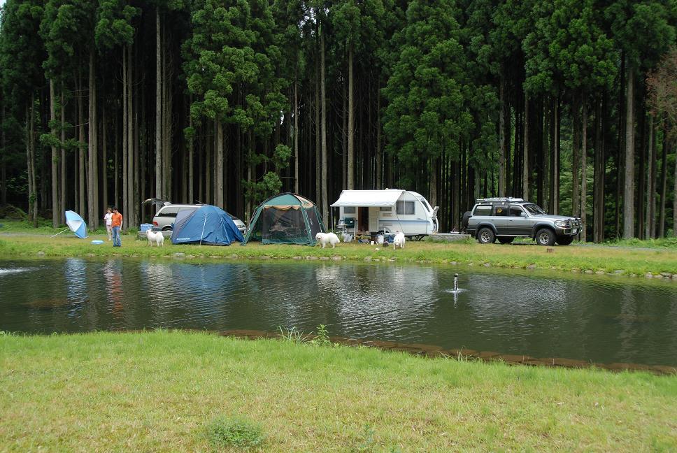 夏キャンプ! 行ってきました。_a0049296_1644877.jpg