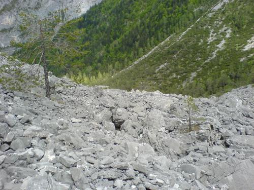 ドロミテの岩山_c0061896_9521727.jpg