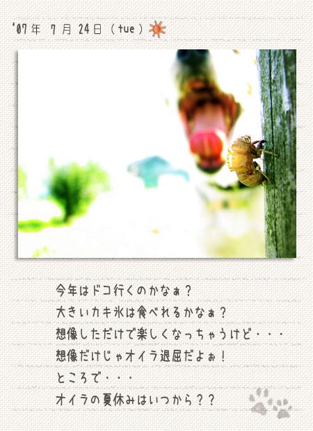 b0040323_9352261.jpg