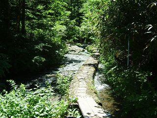 岩菅山~赤石山~大沼池 1/2_a0023246_22281767.jpg