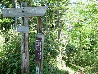 岩菅山~赤石山~大沼池 2/2_a0023246_22311153.jpg