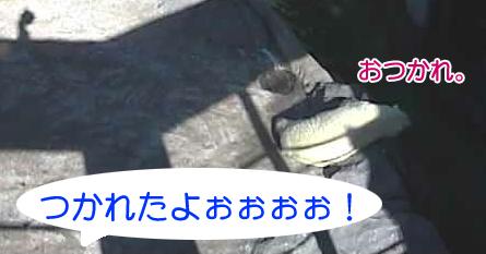 f0023157_1620363.jpg