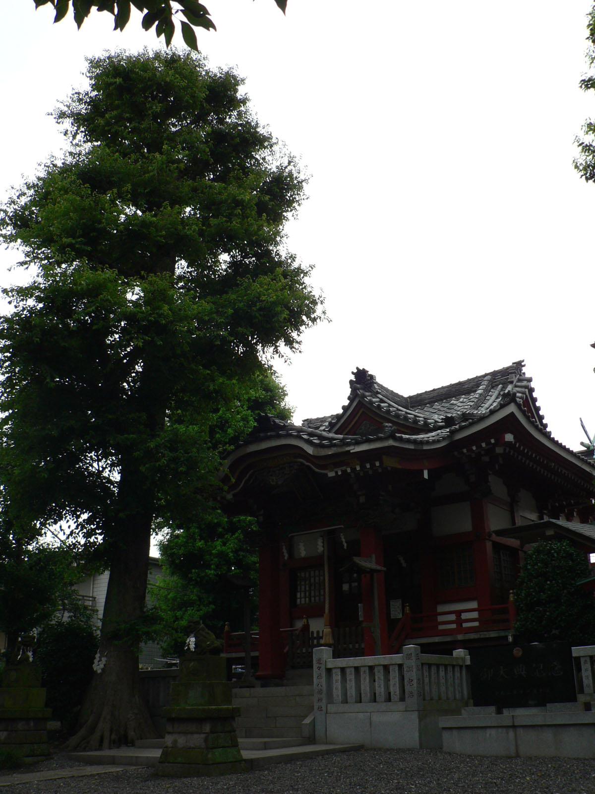 道々橋八幡神社_e0123189_15151446.jpg