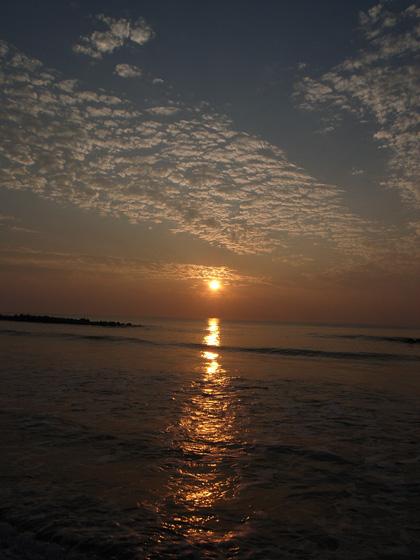 きょうの朝わんこ_c0049299_1438161.jpg