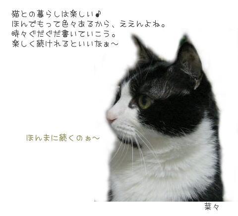 c0125734_13205537.jpg