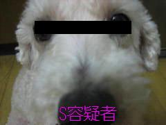 f0076952_2235975.jpg