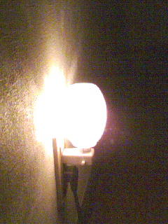 明かりを手がかりに…_b0108363_1651414.jpg