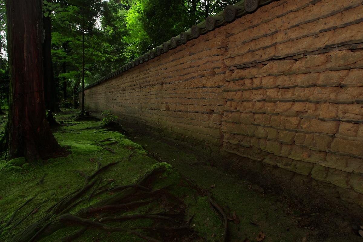 古寺を巡る 奈良 <唐招提寺> 2_f0021869_9453373.jpg