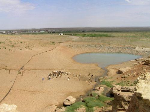 モンゴル ゴビ砂漠3_e0048413_2331736.jpg