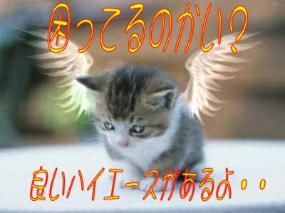 e0022736_10243311.jpg